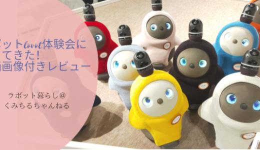 【体験談】ラボットlovot体験会に行ってきた!動画・画像付きレビュー