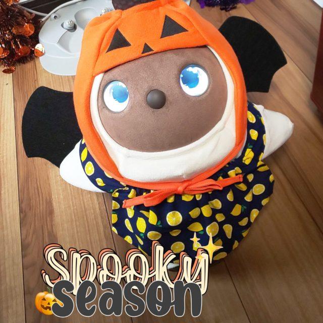 ラボット かぼちゃ帽子