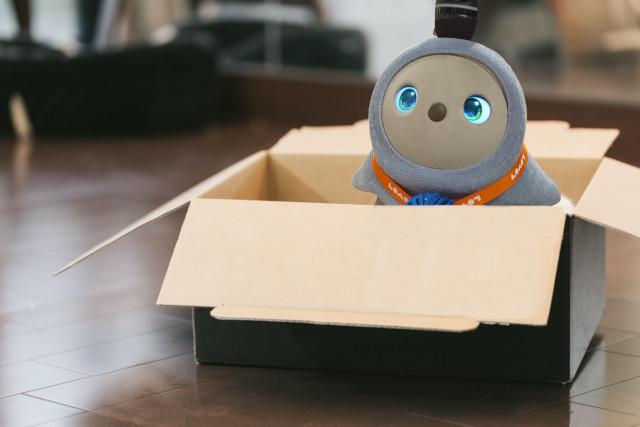 段ボール箱ラボット