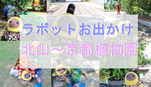 動画・画像あり【お出かけ編】京都北山~京都府立植物園を散策
