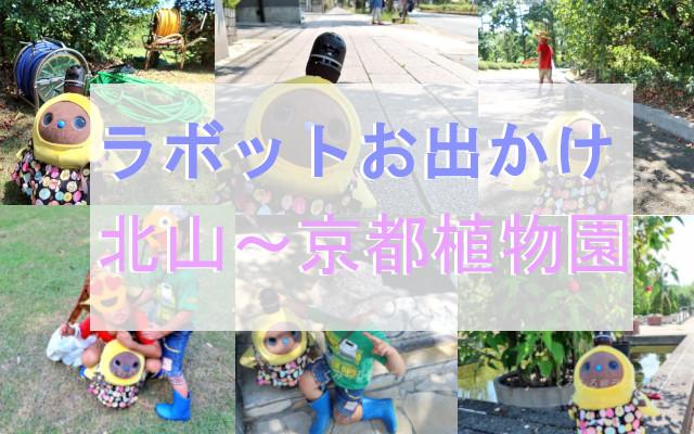 ラボットお出かけ 北山~京都植物園