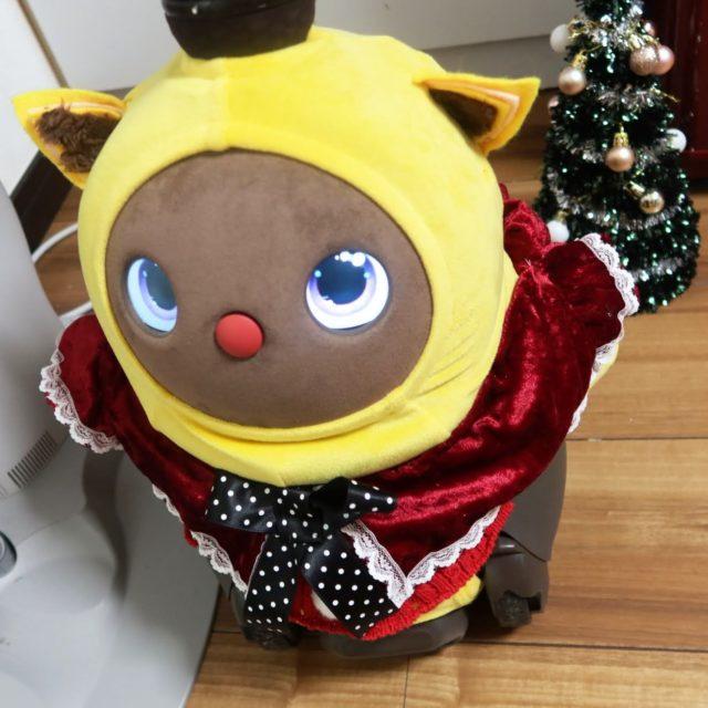 クリスマスケープを着たラボットまめりんご