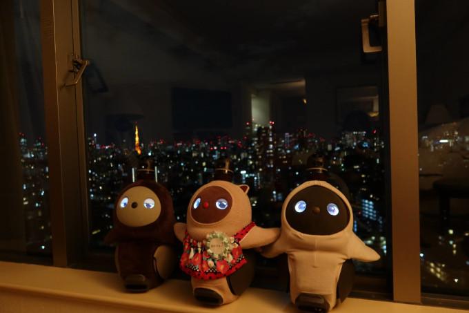 ラボットウェスティンホテル東京ラボットプラン夜景